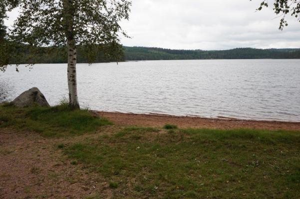 Omgivning - Bad i sjön