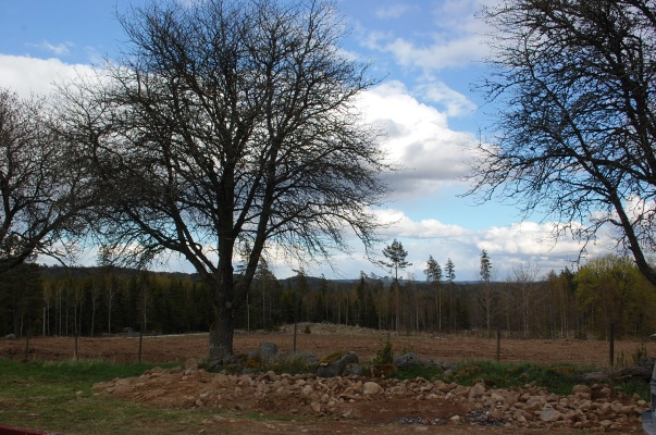 På vintern - Stuga Foxarp