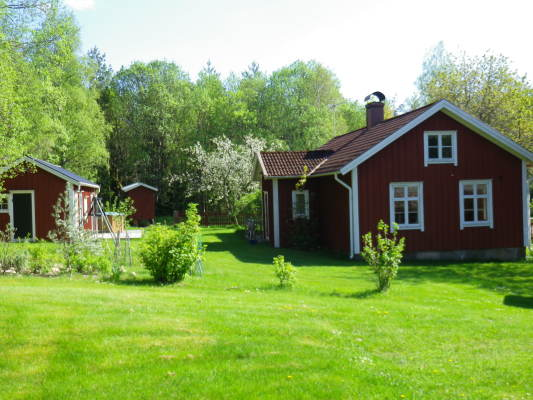 View summer - house in spring