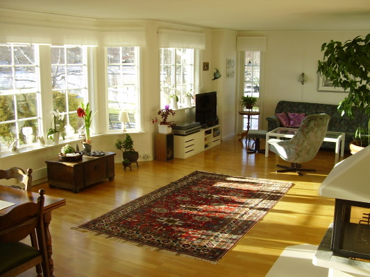 Living room - the large, bright ground floor