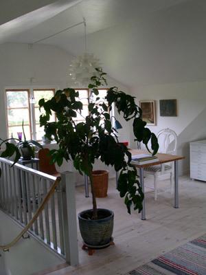 Interiör - Del av allrum på ovanvåningen