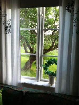 Vardagsrum - utsikt från vardagsrum på vårat äppelträd