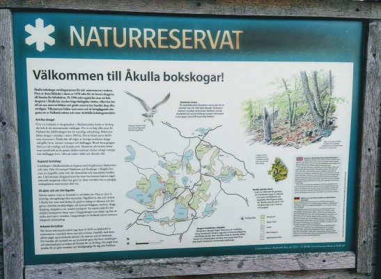Area info - The House is in area with tremendous Nature and Nature Reserves. Åkulla Beech Woods is the collective name for twelve nature reserves in the district