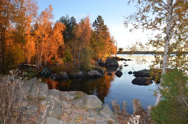Ansicht Winter - Herbst in Norrhult