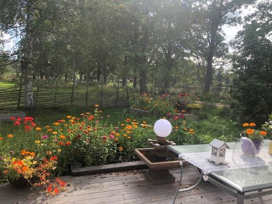 Ansicht Sommer -