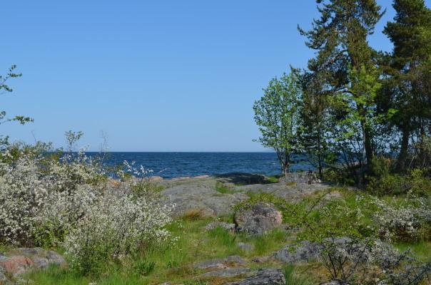 på sommaren - Gunnarsö, Oskarshamn, fantastiskt vackert havsbad, 30 minuter med bil från stugan.