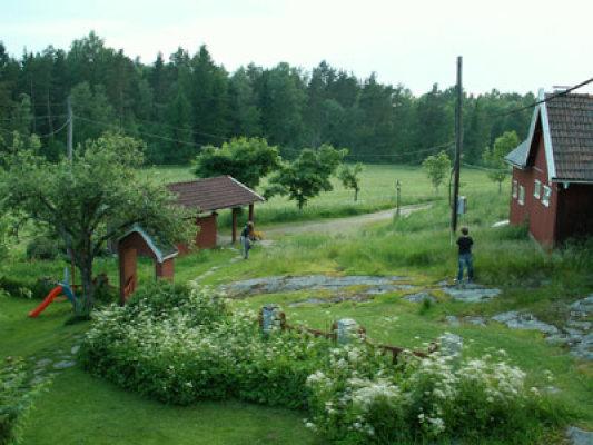 på sommaren - trädgården framför huset
