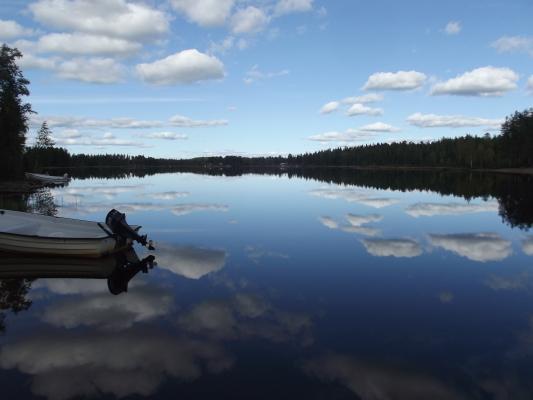 Omgivning - Håensjön mot Norr höstbild