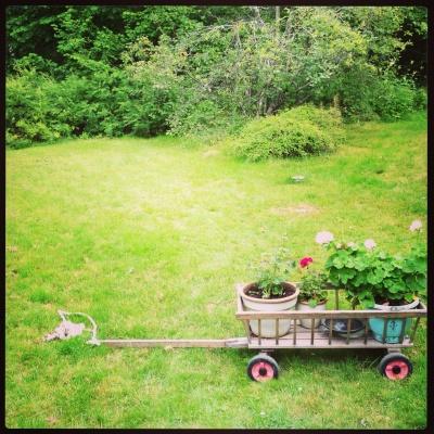 Övrig - En del av den fina trädgården