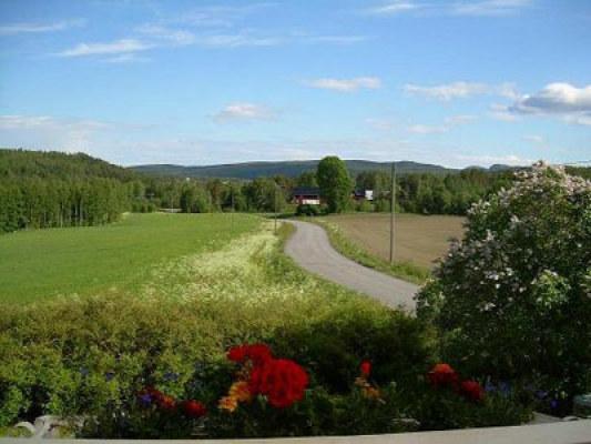 Ansicht Sommer - Die Umgebung