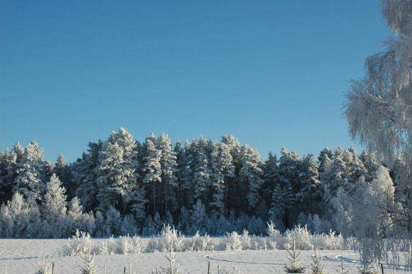 på vintern - Utsikt från terassen