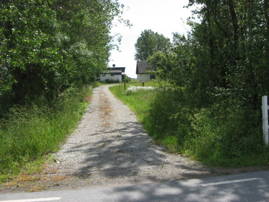 View summer - way to the house