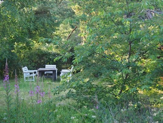 På sommaren - Insynsskyddad trädgård