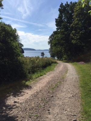 Omgivning - Till bad/fiske/fotbollsplan, 300 m