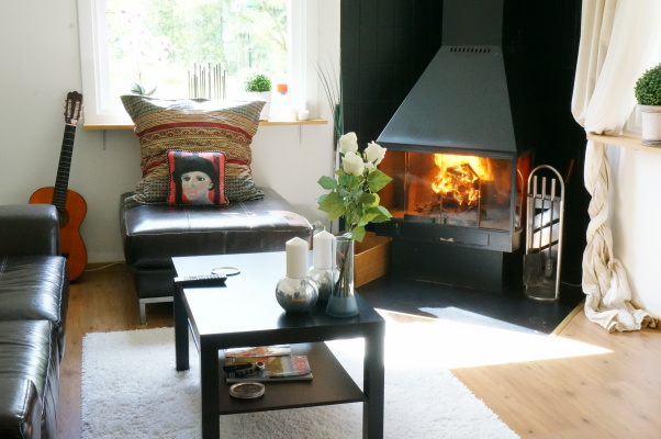 Living room - Fire place