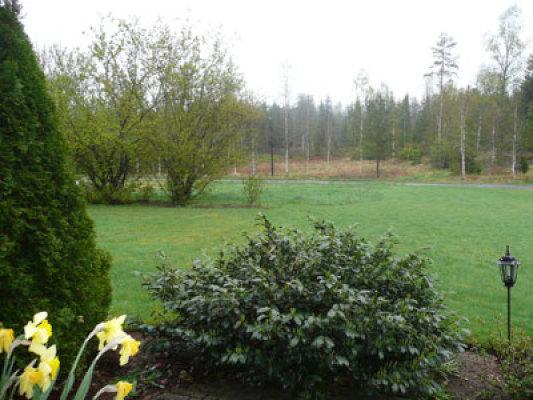 Utomhus - del av trädgården