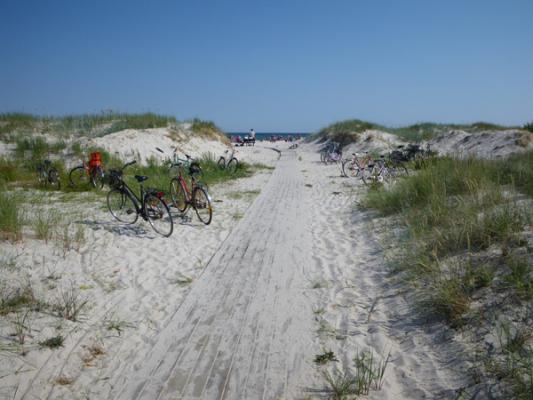 på sommaren - Nästan på stranden ( 50m kvar)