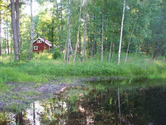 Utomhus - sjö 30 meter från stugan där barnen kan bada tillsammans med föräldrar.