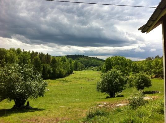 på sommaren - Det är en fantastisk utsikt över betesmarken från stugan!