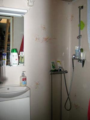 Badrum - duschen i badrummet