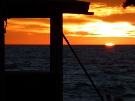 Omgivning - solnedgång