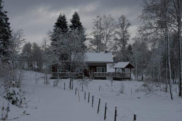 På vintern -
