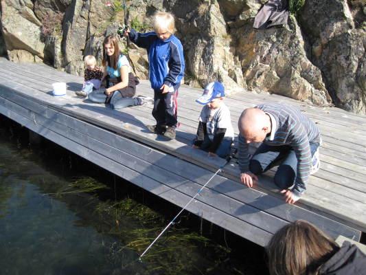 Omgivning - Krabbfiske vid bryggan
