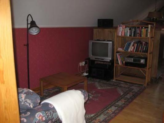 Vardagsrum - vardagsrum med bäddsoffa