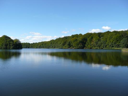 på sommaren - Gyllebosjön med badplats och möjlighet till fiske