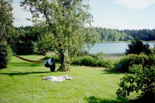 Övrig - utsikt från uteplatsen