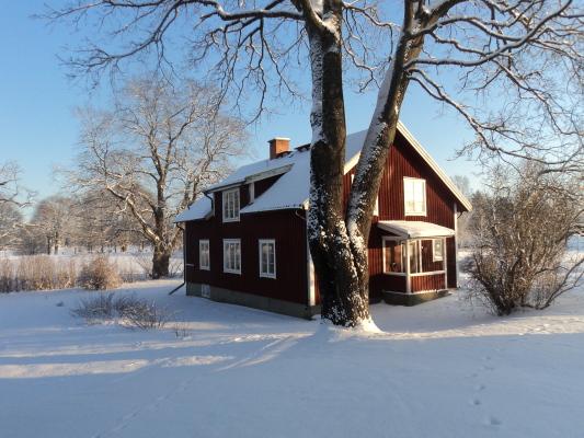 På vintern - Baksidan av uthyrningshuset vintertid. På sommaren är trädgårdsmöblerna placerade här. De kan flyttas efter smak. Till mer sol eller skugga.
