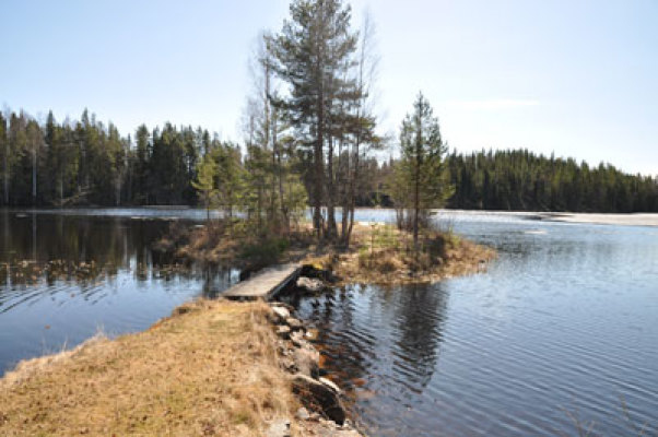 Omgivning - vid sjön