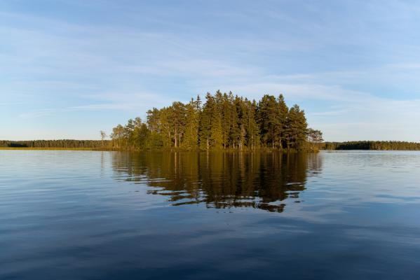 på sommaren - Sjön Fängen