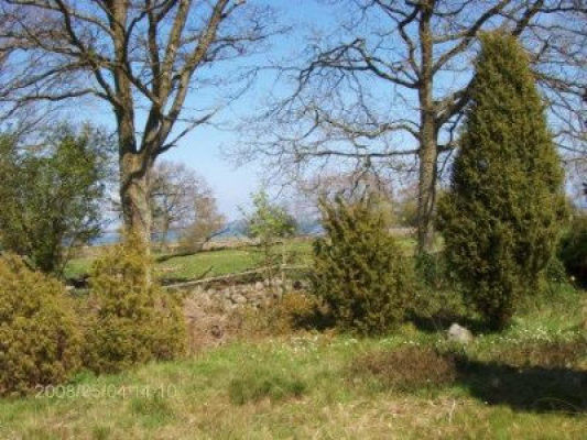 Other - view of the garden