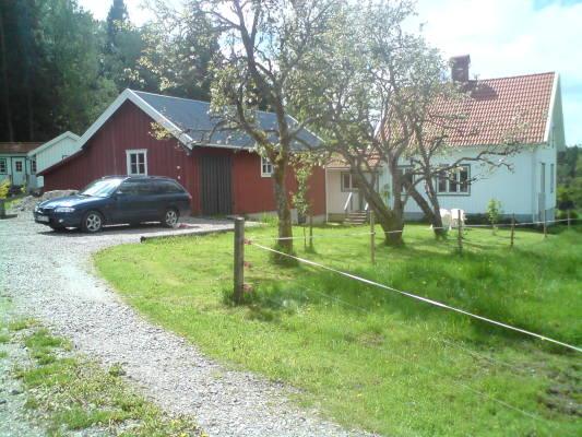 På sommaren - Huset och ladan från framsidan