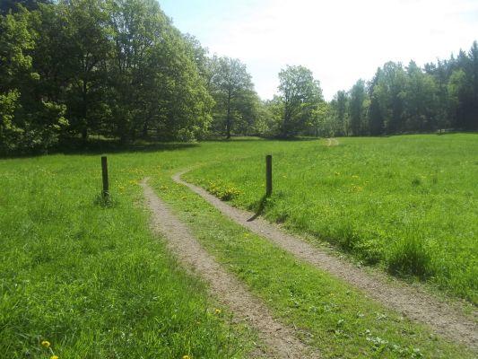 På sommaren - Radhusområdet ligger intill ett naturreservat med fina omgivningar