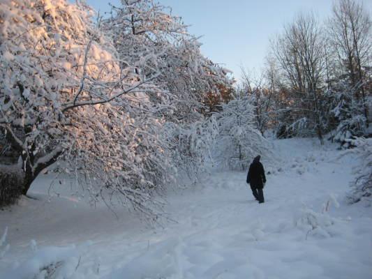 Terrass - Omgivningen på vintern
