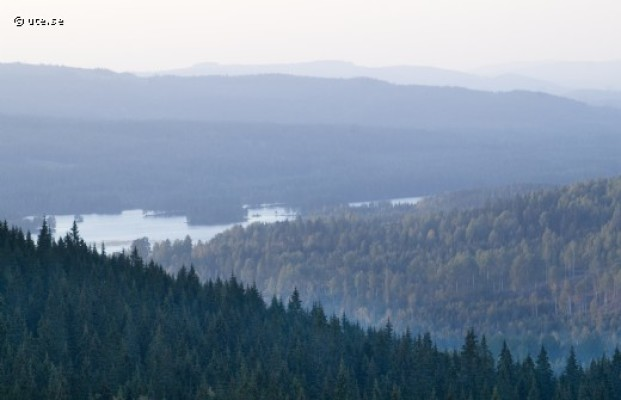 Omgivning - Utsikt från Solberget