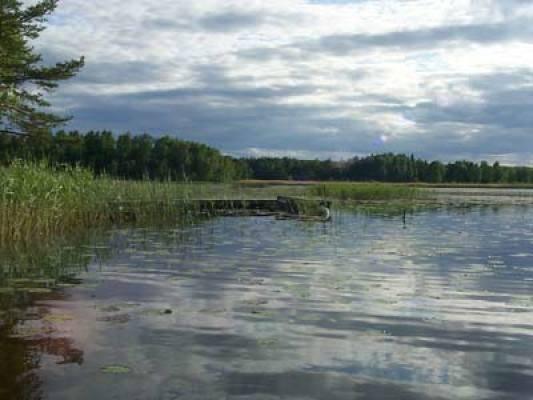 Omgivning - Närliggande sjö