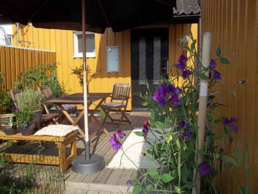 På sommaren - Entré - liten terrass på solig framsida.