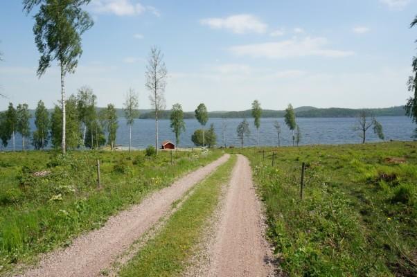 på sommaren - Promenadvägen ner till sjön till privata badplatsen